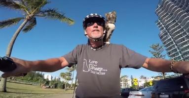 Upoznajte mačku koja zna više trikova od 99% pasa!