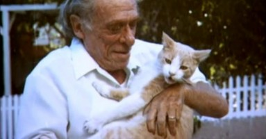 30 umetnika inspirisanih mačkama - II deo