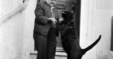 I najmanji čovek na svetu je voleo mačke :)