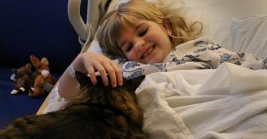 Mačke pomažu bolesnoj deci