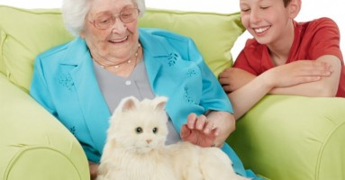 Robot maca za bake i deke - dobra ideja ili ne?