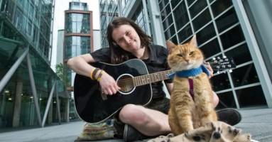 Ulični muzikant Džejms i njegov žuti mačor Bob