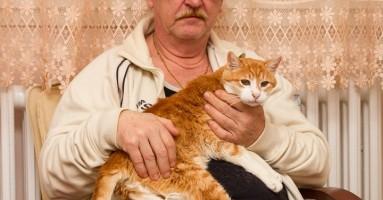 U poseti Garfildu - najstarijem mačku u Srbiji