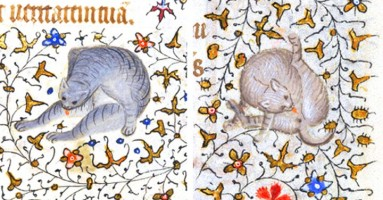 """Bezobrazne"" mačke u srednjovekovnoj umetnosti"