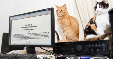 Zakon o dobrobiti životinja Republike Srbije