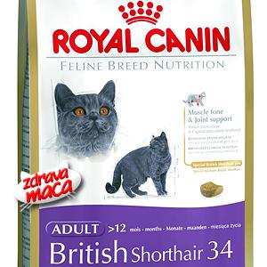 Kompletna hrana posebno pripremljena za potrebe britanske kratkodlake mačke.